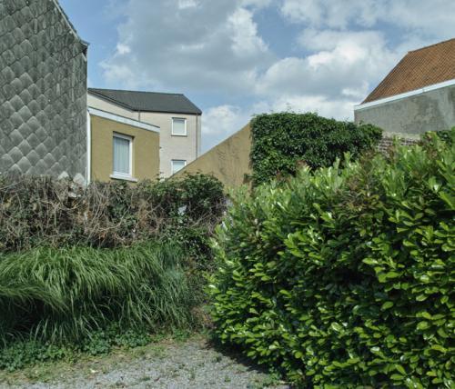 backyardgreen02