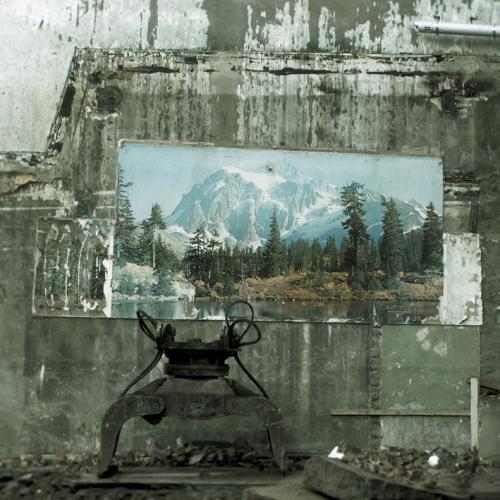 chancre-fresque-nature