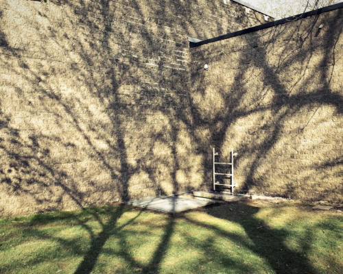 philippe mailleux, ombres, arbres, trape, escalier, Lisières